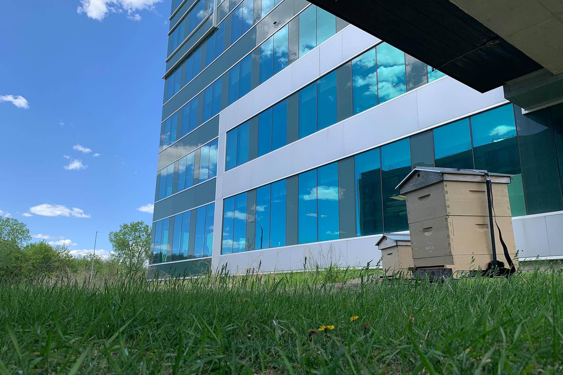 Bâtiment Syscomax avec ruches Alvéole